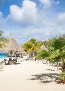 Op zes Caribische eilanden is het Nederlands een officiële taal, maar voor de meeste inwoners is het wel een vreemde taal.
