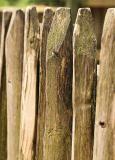 Stek is afgeleid van 'omheining met staken'.